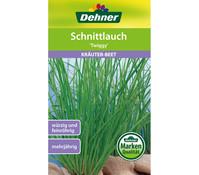 Dehner Samen Schnittlauch 'Twiggy'