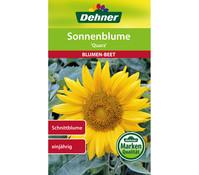 Dehner Samen Sonnenblume 'Quarz'
