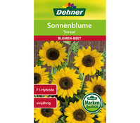 Dehner Samen Sonnenblume 'Soraya'