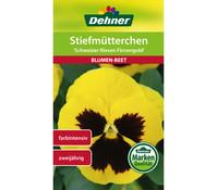 Dehner Samen Stiefmütterchen Schweizer Riesen Firnengold, 2 g