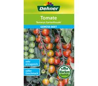 Dehner Samen Tomate 'Bernarys Gartenfreude'