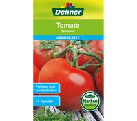 Dehner Samen Tomate 'Hildares'