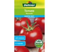 Dehner Samen Tomate 'Maranello'
