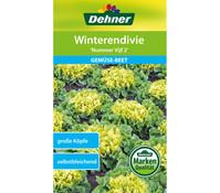 Dehner Samen Winterendivie 'Nummer Vijf 2'