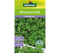 Dehner Samen Winterportulak 'Claytonia perfoliata'