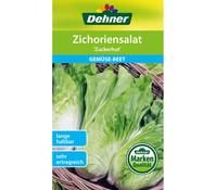 Dehner Samen Zichoriensalat 'Zuckerhut'