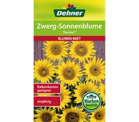 Dehner Samen Zwerg-Sonnenblume Pacino