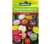 Dehner Samen Zwerg-Strohblume 'Herrliche Prachtmischung'