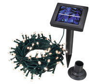 Dehner Solar Lichterkette, 100 LED