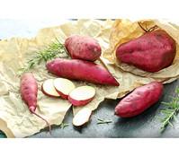 Dehner Süßkartoffel, weiß