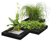 Dehner Treibring für Wasserpflanzen
