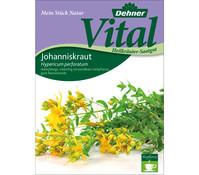 Dehner Vital Samen Johanniskraut