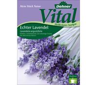 Dehner Vital Samen Lavendel