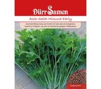 Dürr Samen Asia-Salat 'Mizuna Early'