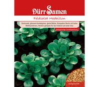 Dürr Samen Feldsalat 'Medaillon'