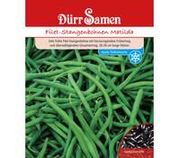 Dürr Samen Filet-Stangenbohne 'Matilda'