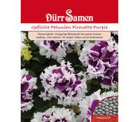 Dürr Samen Gefüllte Petunien 'Pirouette Purple'