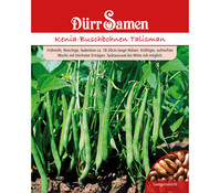 Dürr Samen Kenia-Buschbohnen 'Talisman'