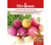 Dürr Samen Radies 'Farbenmischung'