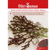 Dürr Samen Rote Rauke 'Asia Salat Agano'