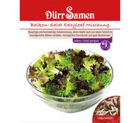 Dürr Samen Salat 'Eazyleaf'
