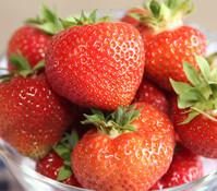 Erdbeere 'Elianny'