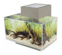 Fluval edge 1 Aquarium-Set, 23 Liter