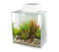 Fluval edge 2 Aquarium-Set, 46 Liter