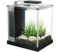 Fluval spec 3 Nano Aquarium, 10 Liter
