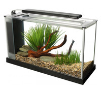 Fluval Spec 5 Aquarium Set, 19 Liter