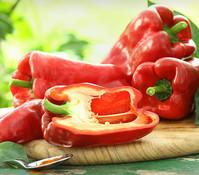 Gourmet Garten Paprika 'Jumbo', veredelt
