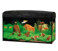 Gute Wahl Aquarien-Set Scout, 54 Liter