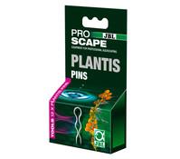 JBL ProScape Plantis Pflanzennadeln, 12 Stück