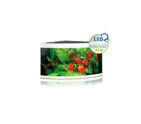 Juwel Aquarium Trigon 350 LED