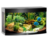 Juwel Aquarium Vision 180