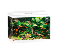 Juwel Primo 70 LED Aquarium Set