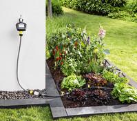 Kärcher Bewässerungsautomat WT 5