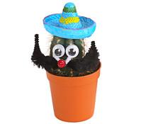 Kaktus, mit Sombrero