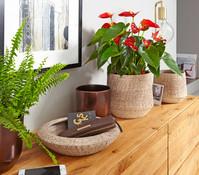 Keramikserie 'Charlet', Vase und Schale