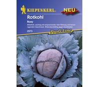 Kiepenkerl Saatgut Rotkohl 'Roxy'