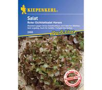 Kiepenkerl Saatgut Salat 'Roter Eichblattsalat Navara'