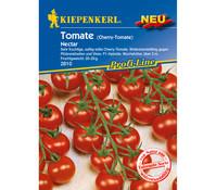 Kiepenkerl Saatgut Tomate 'Nectar'