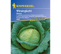 Kiepenkerl Saatgut Wirsingkohl 'Wirosa'