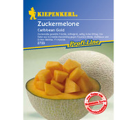 Kiepenkerl Saatgut Zuckermelone 'Caribbean Gold'