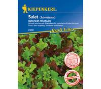 Kiepenkerl Samen Salat 'Babyleaf-Mischung'