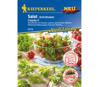 Kiepenkerl Samen Salat 'Crispita II'