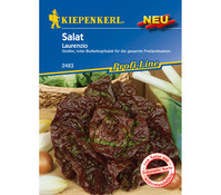 Kiepenkerl Samen Salat 'Laurenzio'
