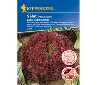 Kiepenkerl Samen Salat 'Lollo Rossa/Solmar'