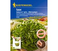 Kiepenkerl Samen Salat 'Salanova'