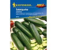Kiepenkerl Samen Salatgurke 'Johanna'